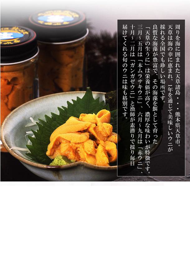 【送料無料】天草殻出し生うに(無塩・無添加)/50g×2本組 ※まもなく終了(季節限定商品)