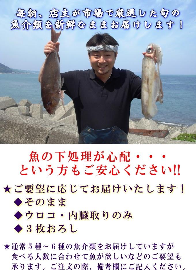 【#元気いただきますPJ/送料無料】【活あわび2枚おまけ付き】天草天然魚介類詰合せ/産地直送/ギフト/のし対応